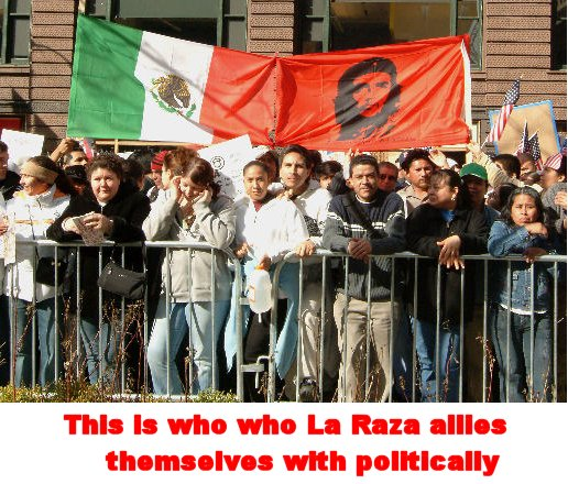 paul introduce birthright citizenship resolution sunday january 30 2011 LaRaza Terrorists